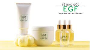 Tế bào gốc phục hồi da EFG cao cấp spa